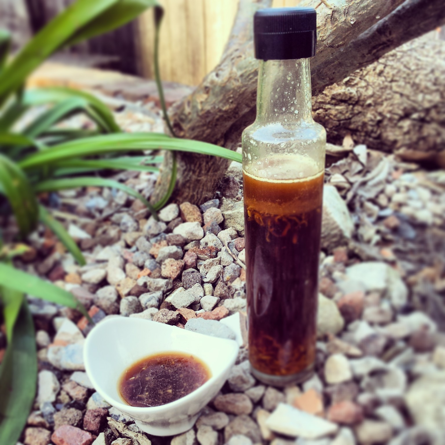Ginger & Sesame Dressing